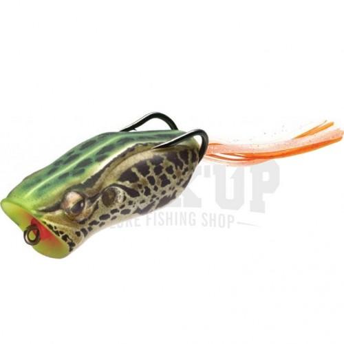 Evergreen Popper Frog 411