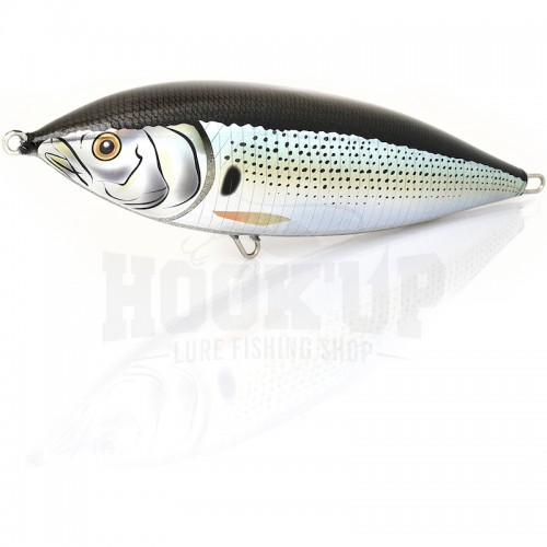 Fish Tornado Bonito 240 02 Real Dotted Shad